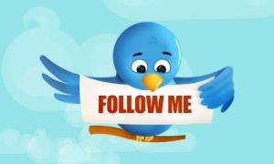 twiter bird